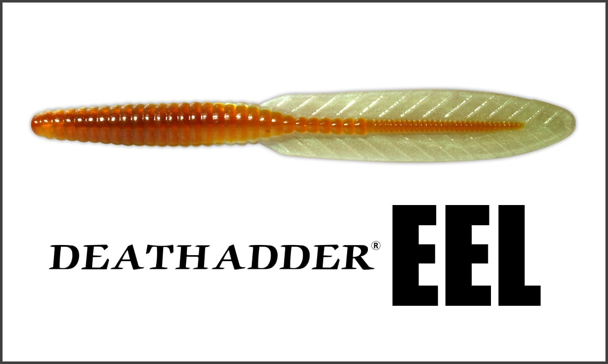 Death Adder Eel